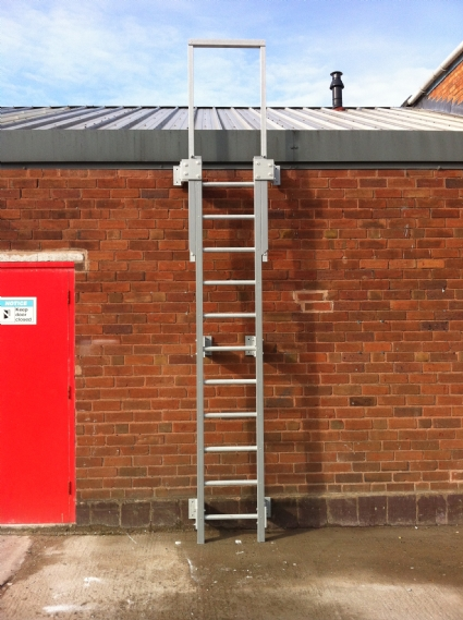 GRP Ladders With Safety Cage